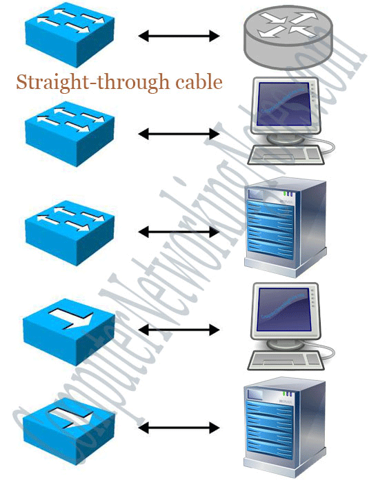devices which a straight through cable can connect