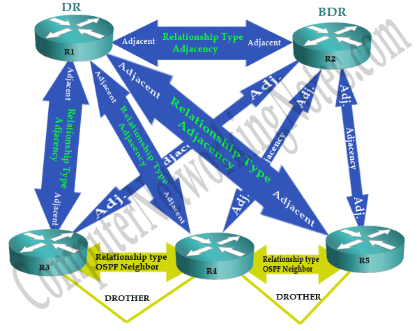 ospf adjacency terms
