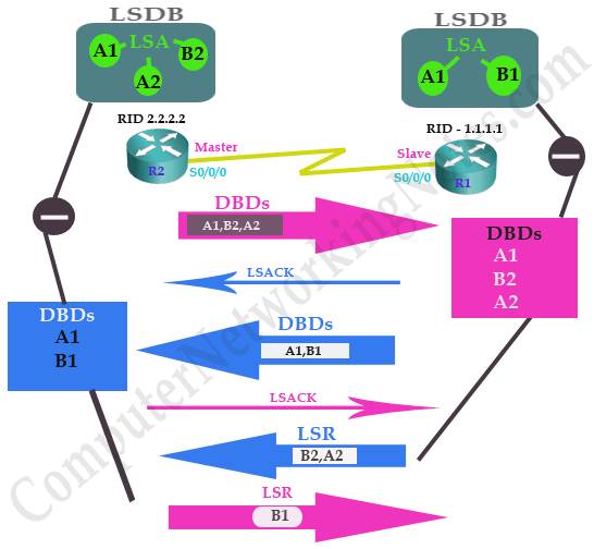 ospf neighborship state exchange