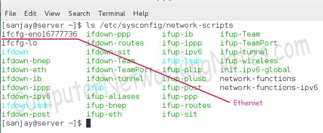 network script directory