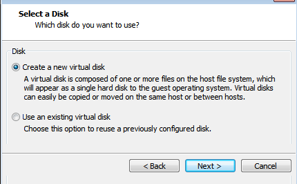 virtual disk