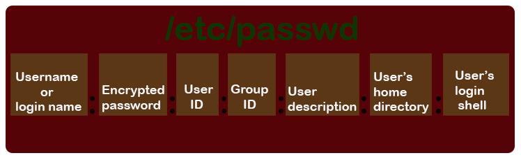 /etc/passwd file field