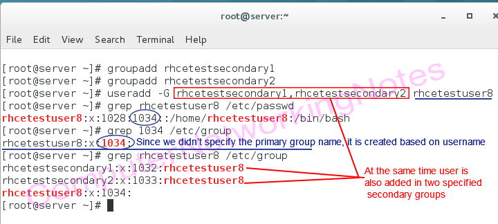 useradd command add user in secondary group