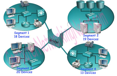Computer Networking Devices Explained with Function