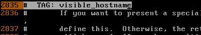 visible_hostname tag