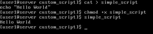 Linux environment variable sample script chomd and run